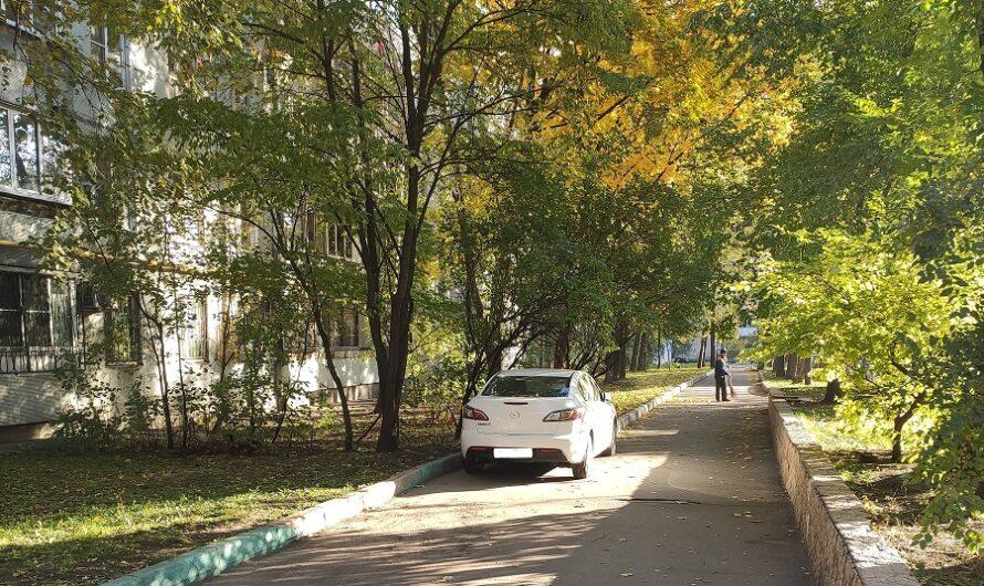Жители домов 18 корп.1-4 и д.20 на Новоалексеевской улице столкнулись с «непрошенными гостями» на детской площадке.